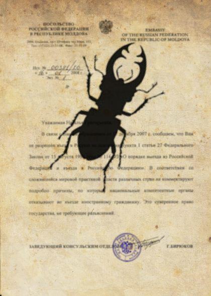 Закон из Кодекса О насекомых