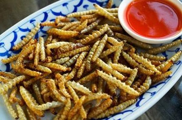 Жареные бамбуковые черви